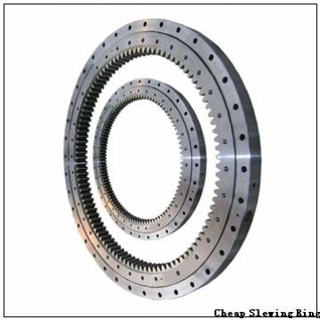 300DBS202y slewing bearing