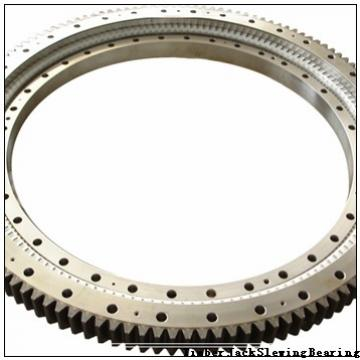 Slewing Bearing for CB2900