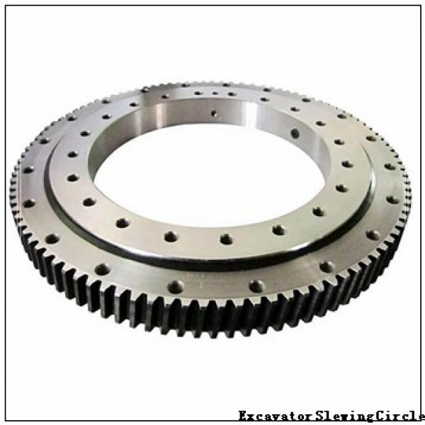 Four Point Contact Slewing Bearings with Internal Gear Rks. 161.16.1314 #1 image